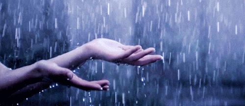 panduan menghadapi musim hujan