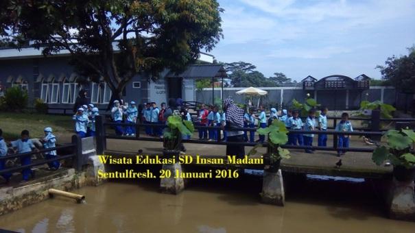 wisata edukasi SD menangkap ikan