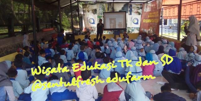 Tempat Wisata Edukasi Yang Tepat Bagi Siswa TK dan SD di lotus room